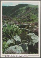 Craig Cerrig-Gleislad, Brecon Beacons, Breconshire, C.1990 - J Arthur Dixon Postcard - Breconshire