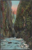 Oneonta Gorge, Columbia River, Oregon, 1911 - Louis Scheiner Postcard - Other