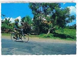INDONESIE  BALI  CPM  TBE  1S693 - Indonésie