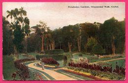 Ceylon - Peredeniya Gardens - Ornamental Walk - Animée - PLATE Ltd N° 16 - Colorisée - Sri Lanka (Ceylon)