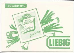 Buvard ( 20 X 14,5 Cm )  Liebig ( Pliures ) - Food