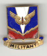 Militaria_aviation_insigne_08_U.S. Army Militant - Armée De L'air