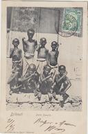 Djibouti  Petits Somalis - Océanie