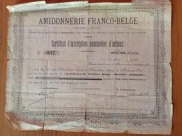 Certificat Nominatif D'actions.Amidonnerie Franco-Belge Du 14 /10/1881 - Shareholdings