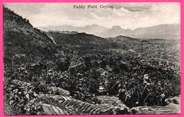 Ceylon - Paddy Field - Rizière - PLATE Ltd N° 29 - Sri Lanka (Ceylon)