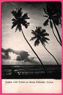 Colombo - Sunset With Palms On Shore - PLATE Ltd N° 26 - Sri Lanka (Ceylon)