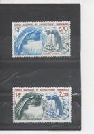 TERRES AUSTRALES Et ANTARCTIQUES Fçaises - Faune Antarctique - Gorfou Sauteur - Oiseaux - French Southern And Antarctic Territories (TAAF)