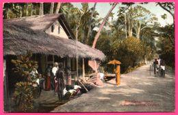 Ceylon - Boralesgamuwa - A Rural Scene - Bullock - Animée - PLATE Ltd N° 24 - Colorisée - Sri Lanka (Ceylon)