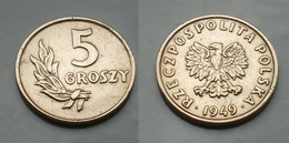 Polen 5 Groschy 1949 Bronze Seltene !     (B322) - Polonia