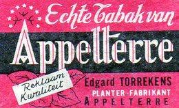 Appalterre Edgard Torrekens 1 - Matchbox Labels