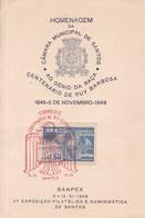 HOMENAGEM DA CAMARA MUNICIPAL DE SANTOS AO GENIO DA RAÇA CENTENARIO DE RUI BARBOSA SANPEX 1949. BRASIL.-BLEUP - Brazil