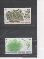TERRES AUSTRALES Et ANTARCTIQUES Fçaises : Flore Antarctique : Poa Cookii (Poaceae], Neuropogon Taylori - French Southern And Antarctic Territories (TAAF)