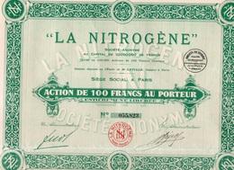 """""""LA NITROGENE"""" - ACTION DE 100 FRANCS -ANNEE 1928 - Electricity & Gas"""