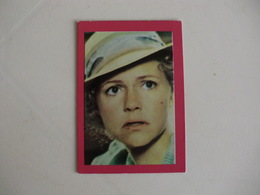 Sally Field Portugal Portuguese Pocket Calendar 1987 - Small : 1981-90