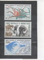 Terres Australes Et Antarctiques Faises : Faune : Lithodes, Mouton De Kerguélen (mammifère, Ovin), Pétrel Bleu (oiseau) - French Southern And Antarctic Territories (TAAF)