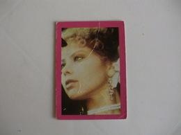 Ornella Muti Portugal Portuguese Pocket Calendar 1987 - Small : 1981-90