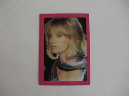 Goldie Hawn Portugal Portuguese Pocket Calendar 1987 - Small : 1981-90