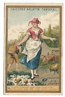 CHROMO - CHICOREE BLEU ARGENT - ARLATTE & Cie Cambrai - Perrette Et Le Pot Au Lait - Tea & Coffee Manufacturers