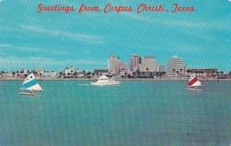 Texas Corpus Christi Sunfish Sailboats In Corpus Christi Bay - Corpus Christi