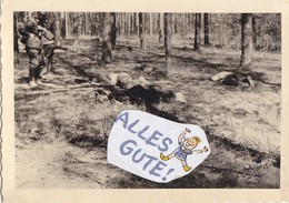 Foto Ermordete Erschossene Partisanen Bandenkampf Russland 1941 German Soldier Weltkrieg Ww2 1939-1945 - Krieg, Militär