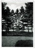 Godinne Sur Meuse - Collège Saint-Paul - Statue De La Sainte Vierge  - 2 Scans - Yvoir