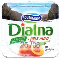 "Opercule Cover Yaourt Yogurt "" Soummam "" DIALNA Vue D'Algérie Pêche Peach Yoghurt Yoghourt Yahourt Yogourt - Milk Tops (Milk Lids)"