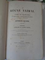 Le Régne Animal Distribué D'après Son Organisation Par Georges CUVIER :atlas Des Oiseaux Par M ALCIDE D'ORBIGNY - Livres, BD, Revues