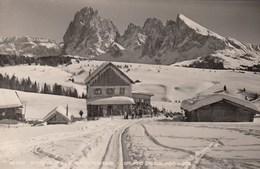 BOZEN-BOLZANO-ALPE DI SIUSI-RIFUGIO AL SOLE-CARTOLINA VERA FOTOGRAFIA-VIAGGIATA IL 6-8-1954 - Bolzano