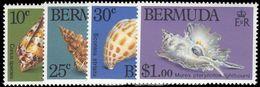 Bermuda 1982 Sea-shells Unmounted Mint. - Bermuda