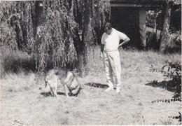 PORTUGAL PHOTO PHOTOGRAPH - PHOTOGRAPHY  -DOG - GERMAN SHEPHERD   - 8 Cm X 11,5 Cm - Places