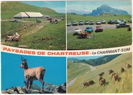 Le Charmant-Som: 4x RENAULT DAUPHINE, SIMCA ARONDE, CITROËN 2CV, PEUGEOT 403 - Paysages De Chartreuse - (Chamois) - Passenger Cars