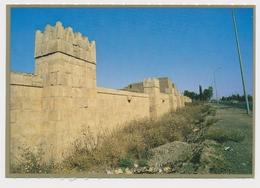NEMRUD  NINEVAH NINIVE IRAQ, PART OF CITY WALL, Vintage Old Photo Postcard - Iraq