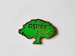 Pin's Ostrée Côté Jardin - 18A - Badges