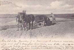 Carte Nels Série Attelages N° 7 Circulée En 1902 Et Postée à Overyssche - Spannen