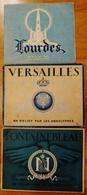 3 ALBUMS EN RELIEF PAR LES ANAGLYPHES-LOURDES, FONTAINEBLEAU,VERSAILLES+LUNETTE - Stereoscopic