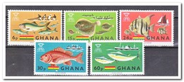 Ghana 1966, Postfris MNH, Fight Against Hunger, Fish - Ghana (1957-...)