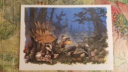 "Old USSR Postcard Znamenskiy ""In The Forest""  LITTLE BADGER AND BUNNY - 1962 Stationery - Illustrators & Photographers"