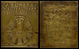 1512 D.S.V., Einseitige Plakette Zur V. Europameisterschaft In Der 220M Renn Klasse 1938, Berlin-Wannsee, 231 G, 100x80  - Army & War