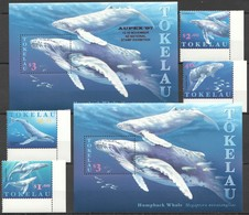 V1244 TOKELAU FISH & MARINE LIFE HUMPBACK WHALE AUPEX 97 !!! 1SET+2BL MNH - Whales