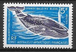 TAAF N°22 Baleine Bleue 1963 ** - Unused Stamps