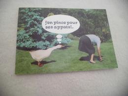 BELLE ILLUSTRATION HUMORISTIQUE ...BEAUX APPATS - Humour