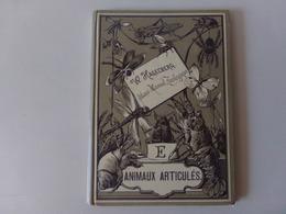 """Atlas Manuel Zoologique Par W. Hagelberg """" Animaux Articulés """" Fin 19 ème 240 Dessins En 20 Tableaux Complet - Books, Magazines, Comics"""