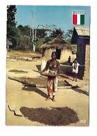 SECHAGE DU CAFE - Ivory Coast
