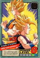 Carte 642 Dragon Ball Z Carddass 1996 Power Level Fr Le Grand Combat DBZ Son Goku Son Gohan - Dragonball Z