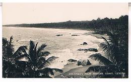 COLOMBOS  PALM  FRINGED  COAST  CEYLON  SRI LANKA  CPSM  TBE  T56 - Sri Lanka (Ceylon)