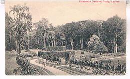 CEYLON  SRI LANKA  PERADENIYA  GARDENS  KANDY TBE    TBE  T64 - Sri Lanka (Ceylon)