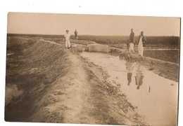 DIRE Soudan Francais Compagnie De Culture Cotonniere Du Niger, Carte Photo Canal D'irrigation Et Champs De Coton - Sudan