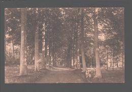 Turnhout - St. Jozefs College - Buitengoed Dreef - 1926 - Turnhout