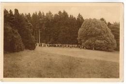 Château D'Ardenne, Promenade Dans Le Parc (pk48852) - Houyet