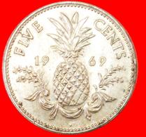 # GREAT BRITAIN: THE BAHAMAS ★ 5 CENTS 1969! LOW START ★ NO RESERVE! - Bahamas